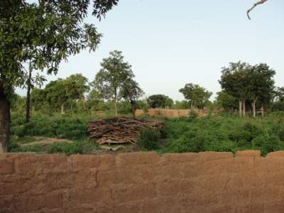 A view over the compound wall